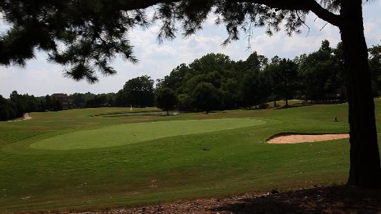 Foxfire Golf and Country Club : Firethorne