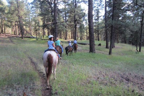 Elk Point Lodge & Cabins: in the saddle
