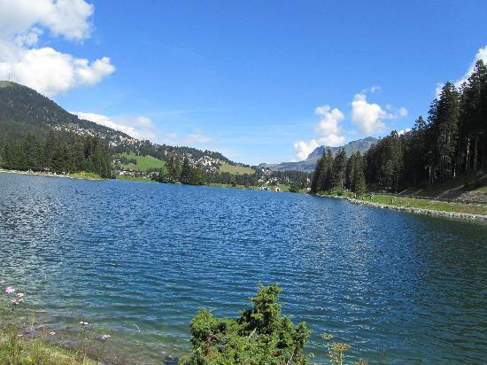 Hotel Schweizerhof: Lake