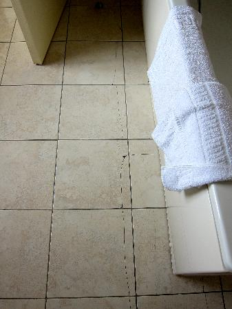 Kings Arms and Royal Hotel: bathroom floor tiles