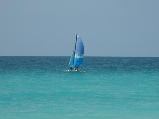 Melia Las Americas: catamaran