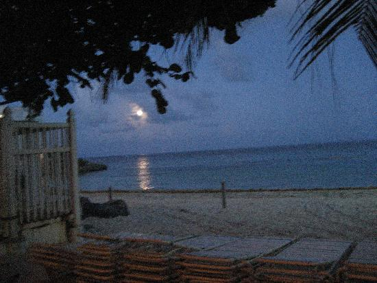 Mr. Busby's Beach Bar: View from the dining area