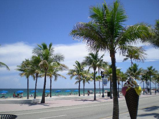 Fort Lauderdale Beach: View towards beach from ice cream shop