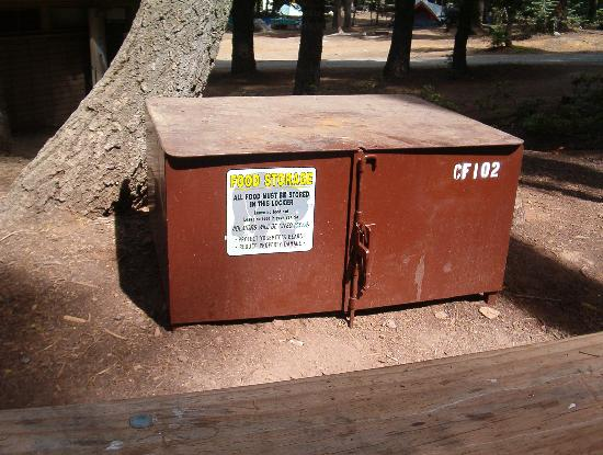 Crane Flat Campground: Bear Box