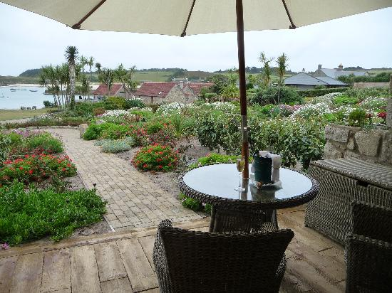 Sea Garden Cottages: view from the cottage ground floor