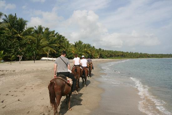 Njoy tours: Starting the horse-ride along the beach