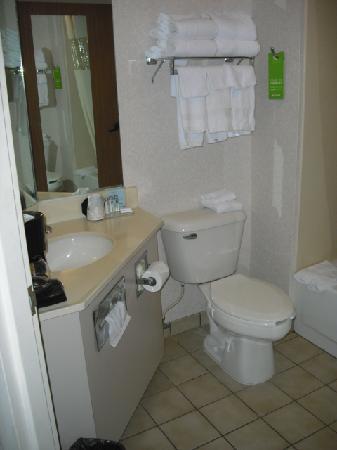 Hampton Inn Columbus-East: Bathroom