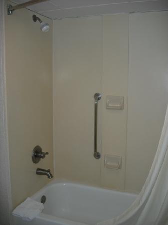 Hampton Inn Columbus-East: Shower