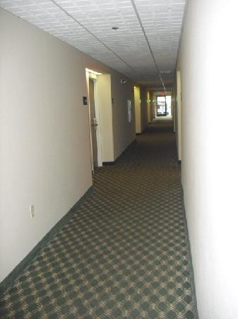 Hampton Inn Columbus-East: 1st Floor Hallway