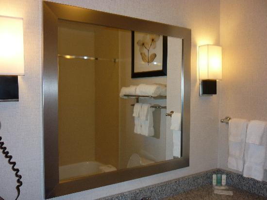 Comfort Suites Airport: Bathroom Mirror