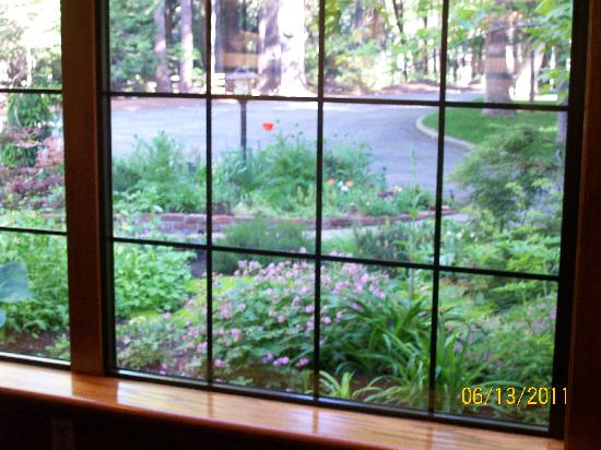 Harmony Ridge Lodge: View from dining room!
