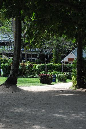 Looking up towards Talei Lounge, Terrace & Treetops restaurants
