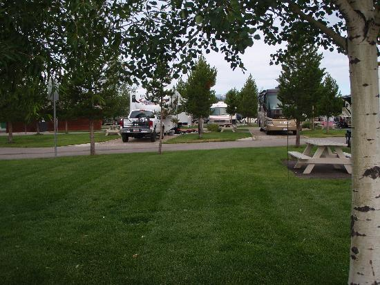 ‪‪Yellowstone Grizzly RV Park‬: Sites‬