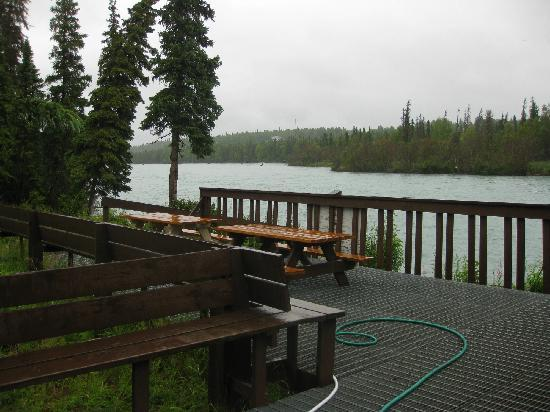 Kenai Riverbend Resort: Kenai River from fish cleaning station; line of cabins start on my right going back away