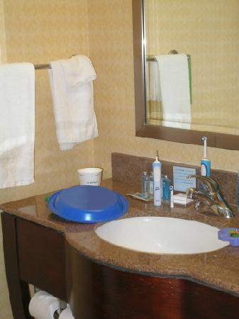 Hampton Inn & Suites Denver Downtown: bathroom