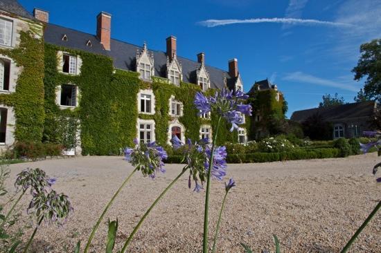 Chateau de l'Epinay: Agapantos delante del Castillo