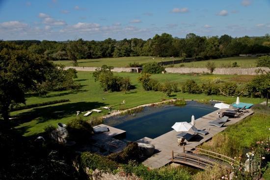 piscina natural delante del chateau picture of chateau de l 39 epinay saint georges sur loire. Black Bedroom Furniture Sets. Home Design Ideas