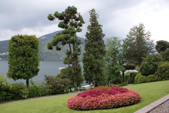 Tremezzina, Italy: garden