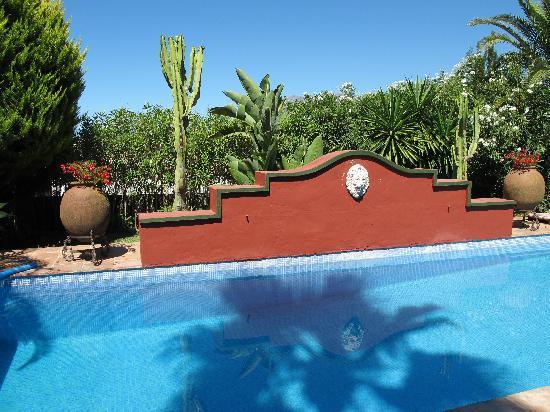 Casa Las Palmeras Suites Adults Only: La piscina