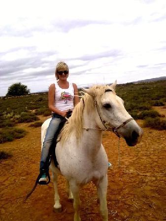 De Zeekoe Guest Farm: Horse Riding