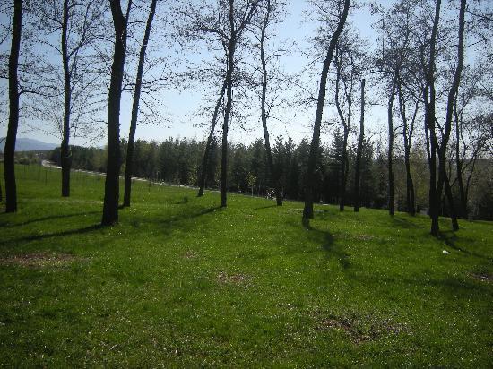 Krusevac, Serbia: Bagdala - park and picnic area close to downtown