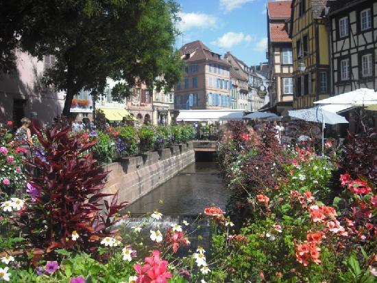 Route des vins d'Alsace: Colmar