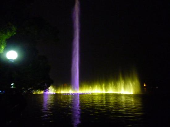 East King Business Hotel: Musical fountain