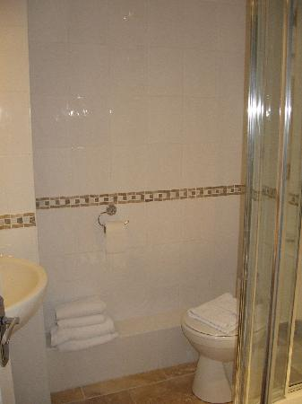 King Robert Hotel: Bagno
