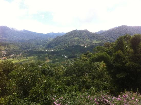 La Montana y el Valle Coffee Estate Inn: View from our bungalow's balcony