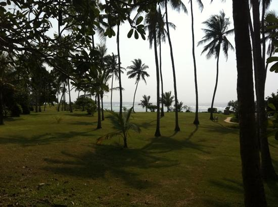 Hillpark Tiwi: private park on the way to the beach!!
