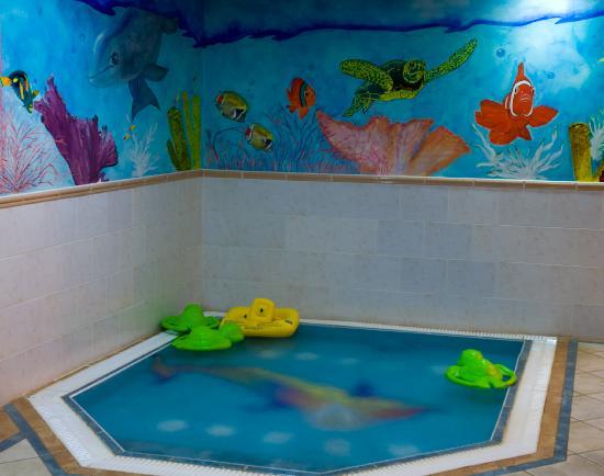 Swimming Pool Picture Of Burrendale Hotel Country Club Spa Newcastle Tripadvisor