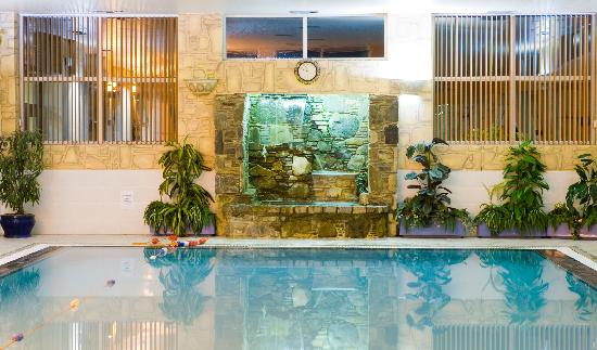 Swimming Pool Picture Of Burrendale Hotel Country Club Spa Newcastle Tripadvisor