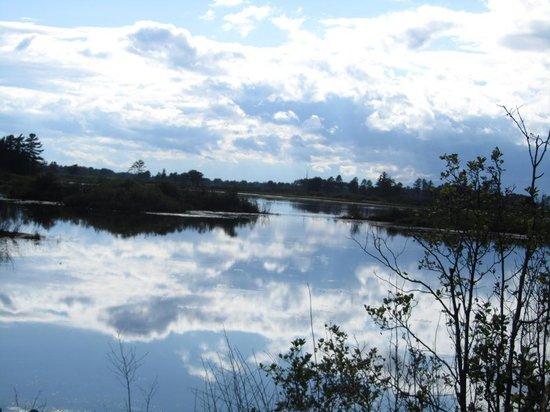 Seney National Wildlife Refuge: Lake at Refuge