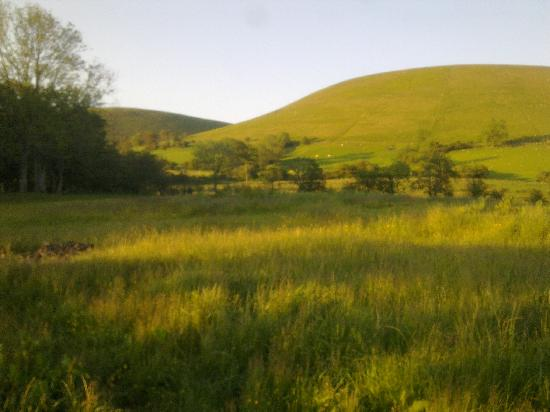 Great Trewern Bed and Breakfast: View of There field looking up to hill
