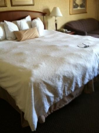 Hampton Inn Clinton: LUMPY