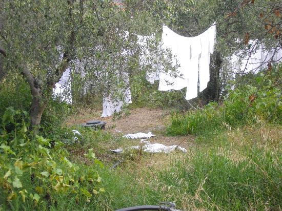 Nikiti, Grecia: drying the sheets