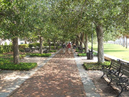 Harbourview Inn: Beautiful walks in every direction