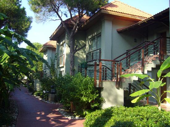 IC Hotels Residence : deluxe villas, view opposite to pool side