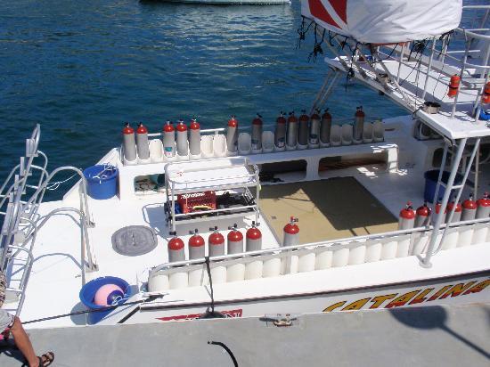 Catalina Divers Supply : Dive boat