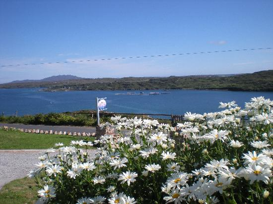 Clifden Bay Lodge: Vue de Clifdenbaylodge