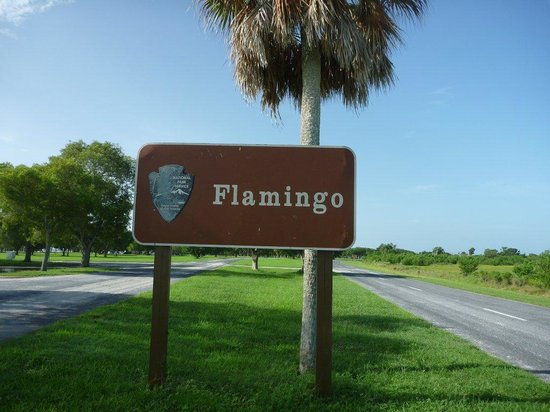 https://media-cdn.tripadvisor.com/media/photo-s/01/fb/91/14/flamingo-sign.jpg