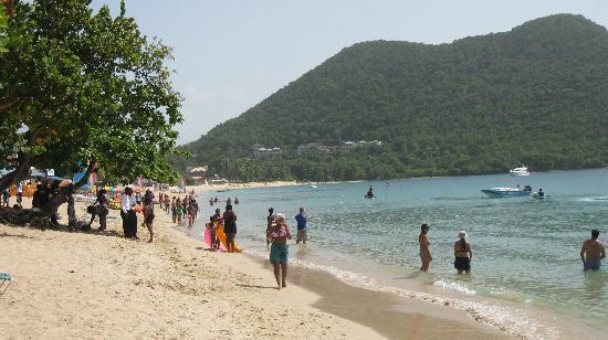 Bay Gardens Beach Resort: lovely beach