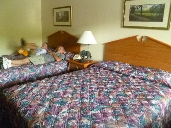 Johnson's Inn: beds
