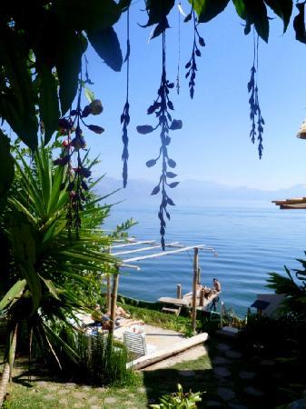 Hotel IslaVerde: gardens