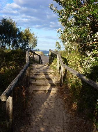 Castaway Cove: Short walking track to beach