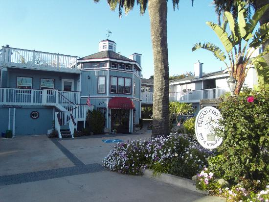 Pelican Cove Inn: pelican cove a little gem