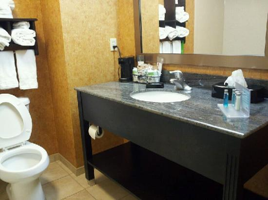Hampton Inn & Suites Elk City: Bathroom