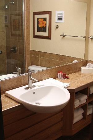 Ramada Tropics Resort / Conference Center Des Moines: Beautiful Bathroom