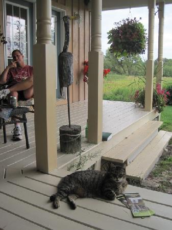 Holly Cottage Bed and Breakfast: chillin' with kitty