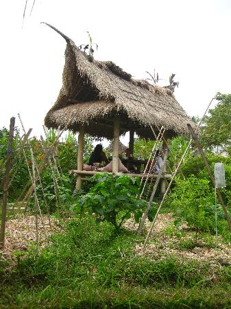 Bali Hut - A nice place to eat